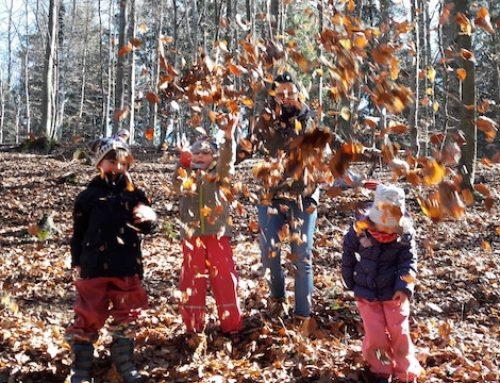 Den Wald für die Entwicklung der kindlichen Natur nutzen