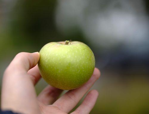 Apfelsaftaktion 2018